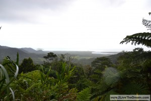 The wet tropics in Northern Queensland at Cape Tribulation